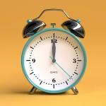 Darbo  laikas (01.04-01.31)